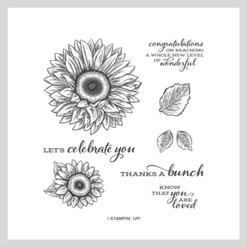 Celebrate Sunflowers stamp set by stampin' Up!
