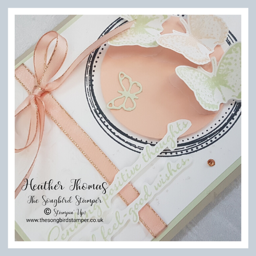 A section of the card is embossed using the Parisian Flourish embossing folder and there is some ribbon to hide the seam, tied in a bow. The butterflies are layered onto vellum to give some texture and the sending positive thoughts sentiment is fussy cut and layered on.