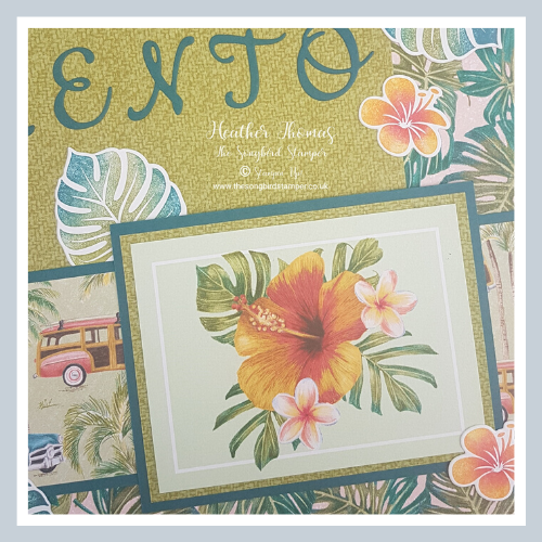 Tropical Oasis Memories and More Card Pack from Stampin' Up!