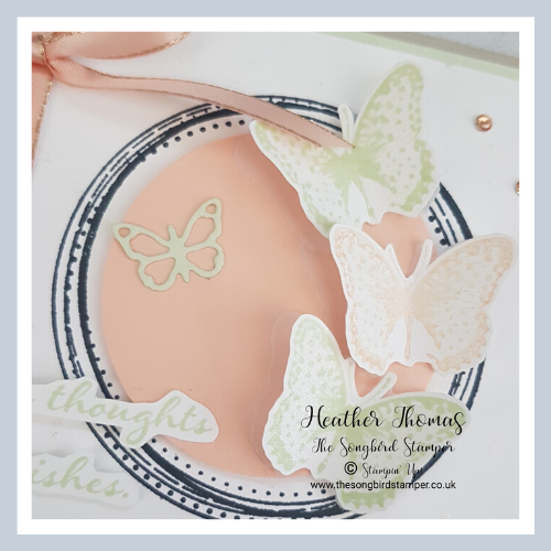 Three beautiful butterflies from the Positive Thoughts stampe set adorn the frame made with the Swirly Frames stamp set