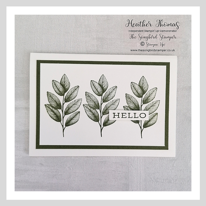 A simple stamping project using the Forever Fern stamp set from Stampin' Up!