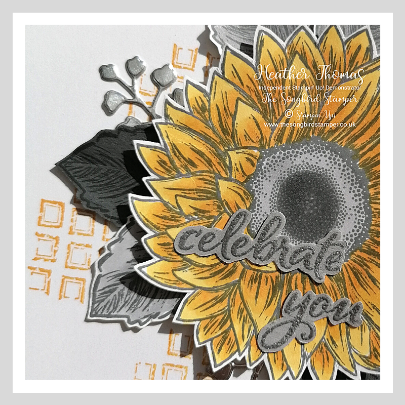 Close up of my handmade Celebrate sunflowers Card