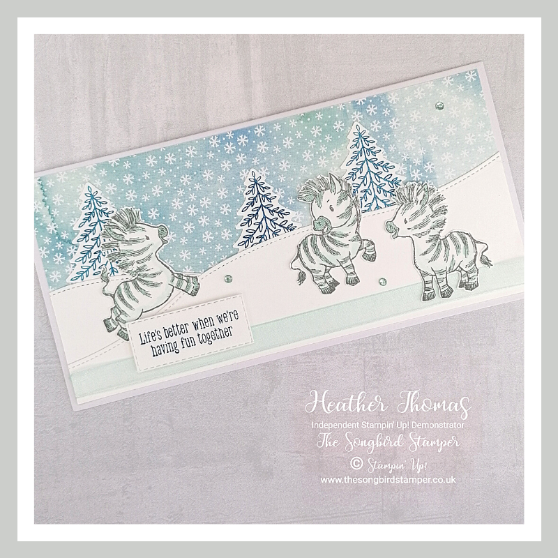 Zany Zebras do Christmas Card