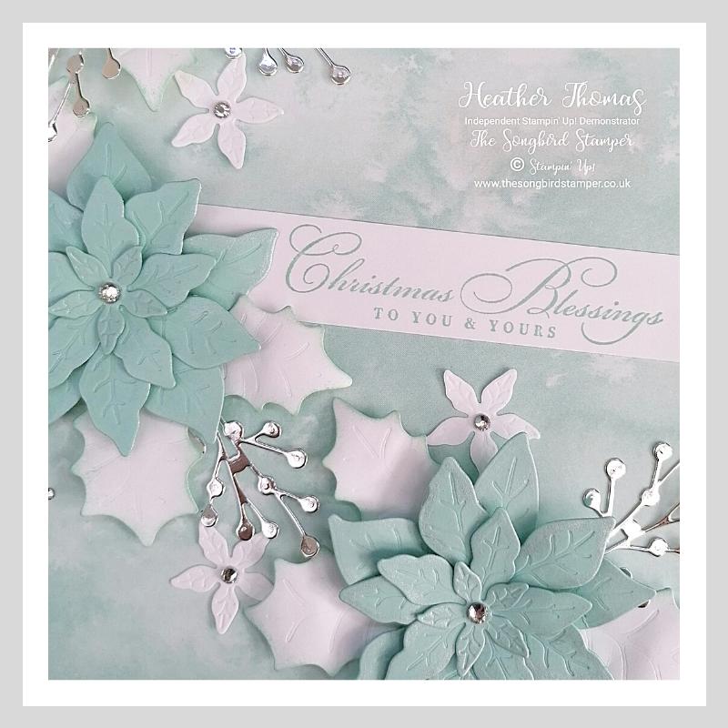 A close up of the Poinsettia Petals Box Frame
