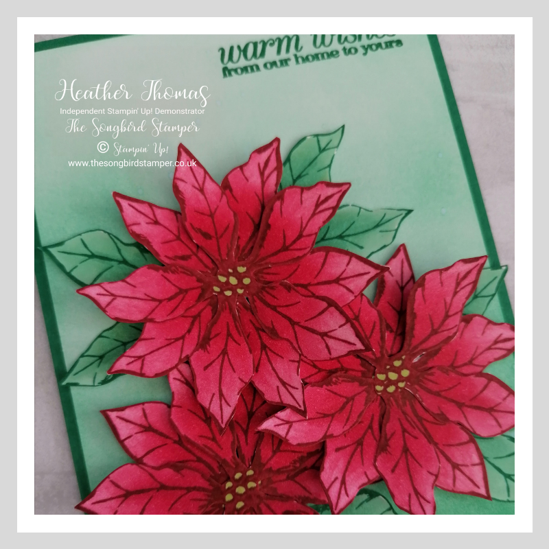 A close up of my handmade card using the Poinsettia Petals bundle
