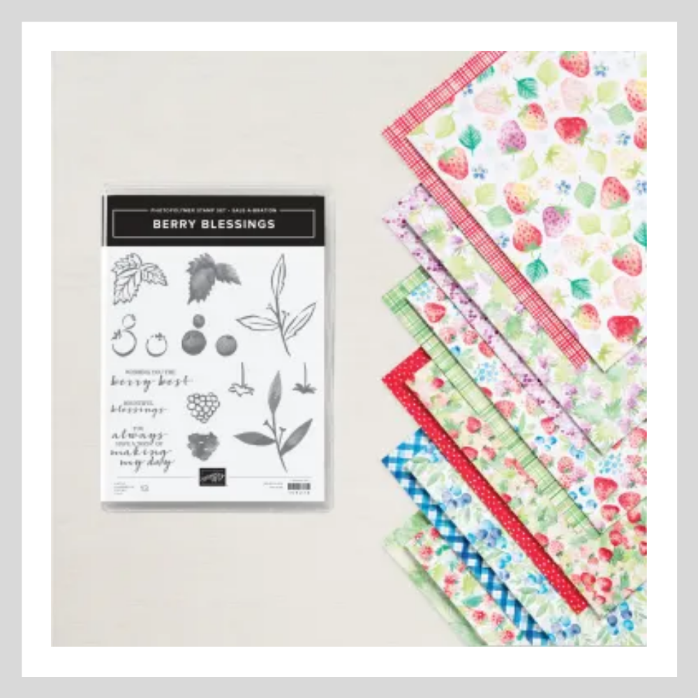Berry Blessings Stamp set and Berry Delightful Designer Series Paper