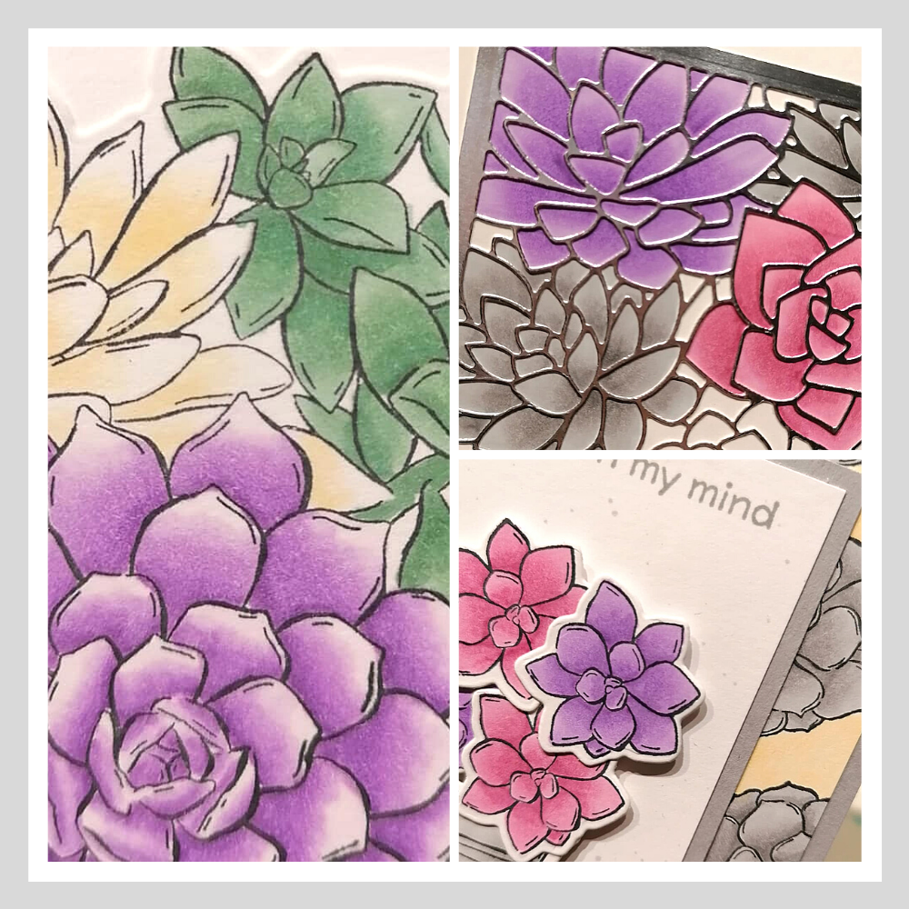 Some of the cards I will be demonstrating on the 'how to colour with alcohol markers' course