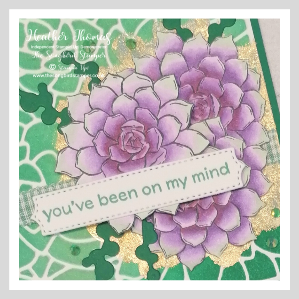 A close up of a card using the blended background technique used for my New Year New Technique blog hop. the products used include the Simply Succulents bundle from Stampin' Up!