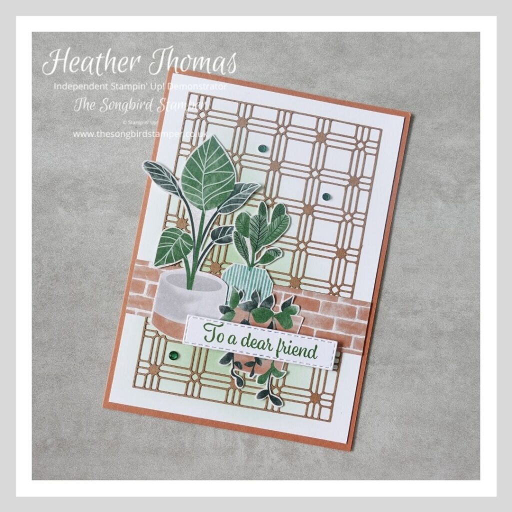 A handmade card using the Bloom where you are planted suite collection from Stampin' Up!